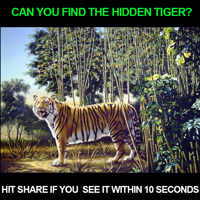 The Hidden Tiger