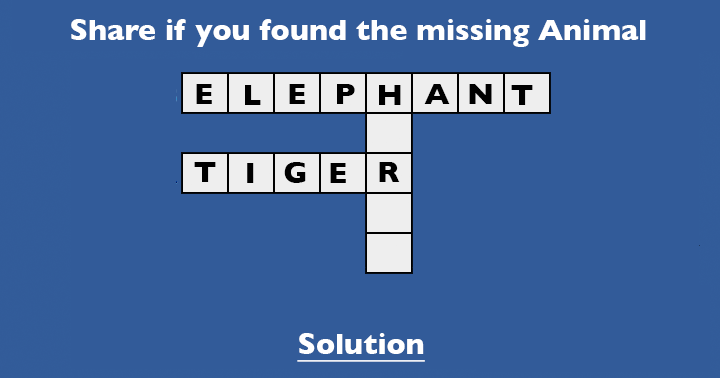 Find the missing animal