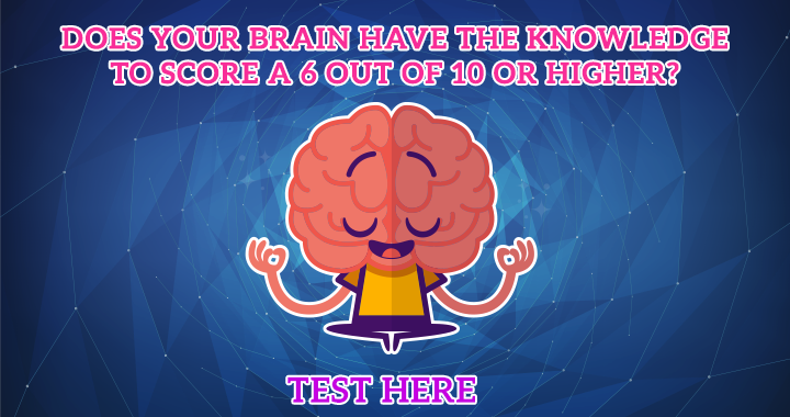 We bet your brain can't score a 6+