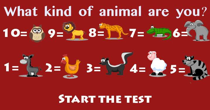 Test what kind of animal you are in this General Trivia Quiz