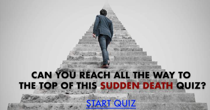 Can you reach all the way to the top?